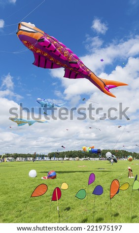 TWENTERAND, NETHERLANDS - JULY 6, 2014: Colorful kites on the fifth international kite festival. Most of the participants are from Germany and Belgium. - stock photo