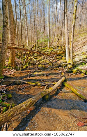 Twenty Mile Creek Close to its source in the Smoky Mountains - stock photo