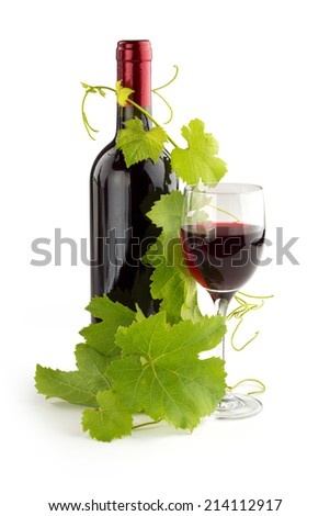 twig of grapevine twined on a red wine bottle - stock photo