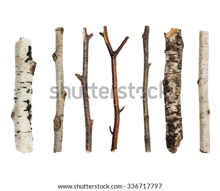 Twigs, set macro dry branches birch isolated on white background,  with clipping path - stock photo
