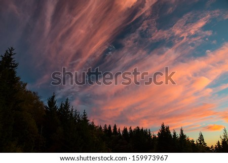 Twilight on the Blue Ridge Parkway near Mount Mitchell - stock photo