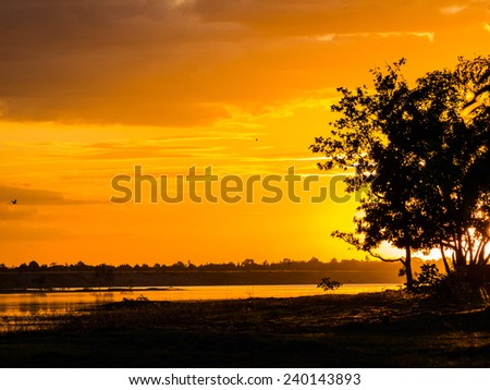 Twilight sunset colors over the waterfront evening. Tree silhouettes in the foreground. - stock photo