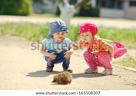 two baby friends looking at the hedgehog, - stock photo
