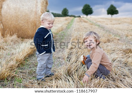 Two beautiful little toddler boys having fun on straw field in summer - stock photo
