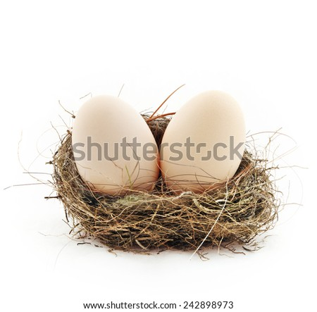 Two big eggs inside the small nest, isolated on white - stock photo