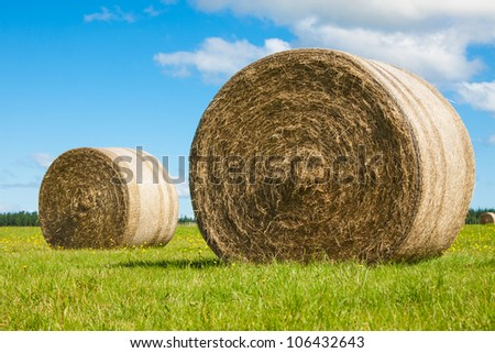 Two big hay bale rolls in a lush green field and blue sky - stock photo