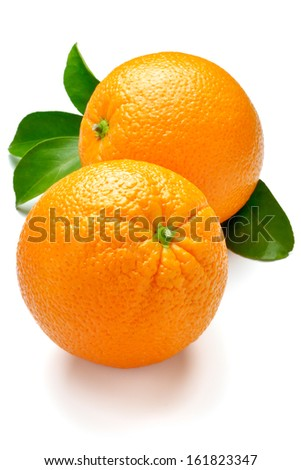 Two big oranges with leaves on a white background. - stock photo