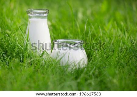 Two bottles of fresh milk over summer background - stock photo