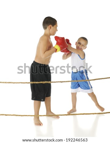 Two brothers boxing behind boxing ring ropes.  The preschooler is whacking away, eyes clothes, as his elementary-aged brother casually blocks his punches.  On a white background. - stock photo