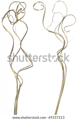 Two bundles of ornamental curly sticks. Very high-res. Clean edges, no shadows. - stock photo