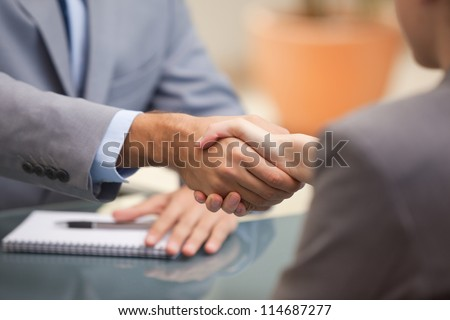 Two Businesspeople shaking hands indoors - stock photo