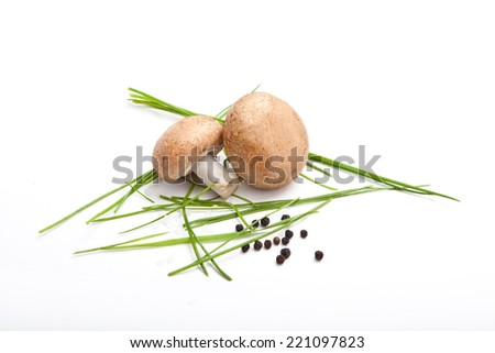two champignon mushroom with fresh parsley, pepper and salt, white background,  - stock photo