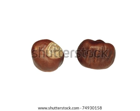 Two chestnut isolated on white background - stock photo