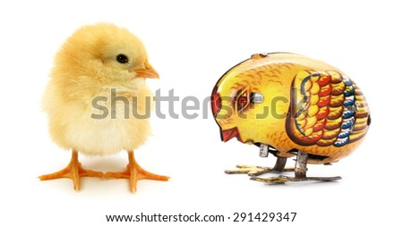 Two chicks one mechanical - stock photo