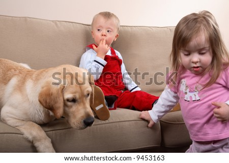 Two children with Down Syndrome playing with a dog on a sofa. - stock photo