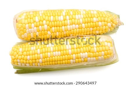 two corns on white background  - stock photo