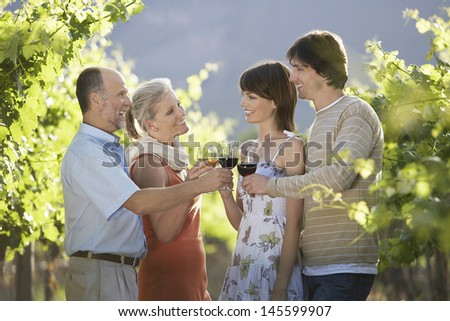 Two couples toasting wine glasses in vineyard - stock photo