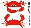 Two crabs - stock photo