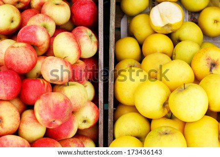 Two crates full of apples, red and yellow next to each other - stock photo