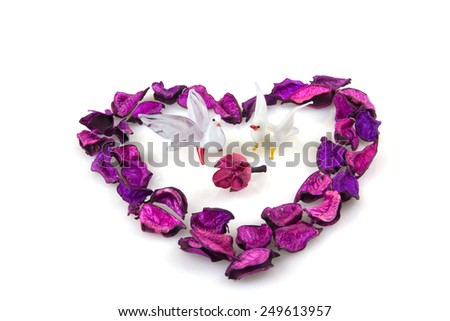 Two doves inside violet heart isolated on white, love symbol - stock photo