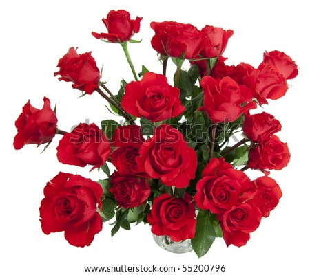 Two dozen red roses isolated on white background with the green stems in a large glass vase with water. Copyspace on all four sides. - stock photo