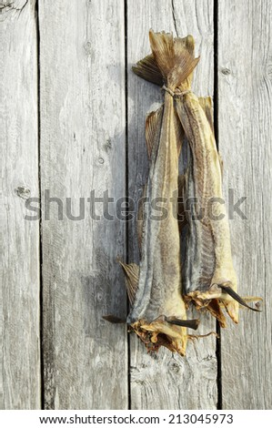 Two dried cods hanging at gray weathered boathouse wall in Nordland, Norway.  - stock photo