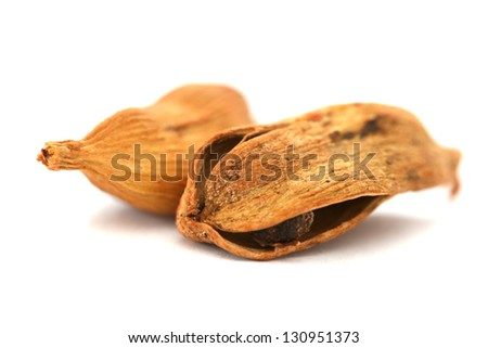 Two dry cardamom see pods on white background - shallow dof - stock photo