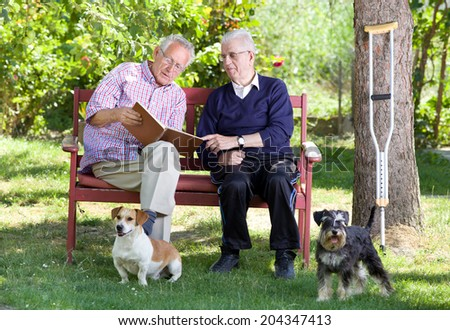 Two elderly men sitting in garden with dogs - stock photo
