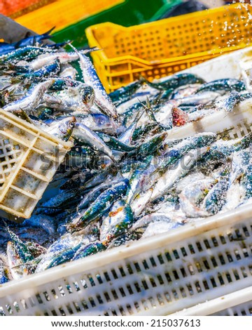 Two fisherman arranging white containers full of fish on top of each other while coating them with salt - stock photo