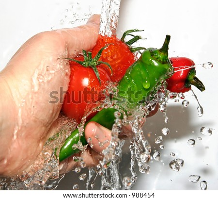 Two fresh chilies being rinsed with Two vine tomatoes - great details of water droplets - stock photo