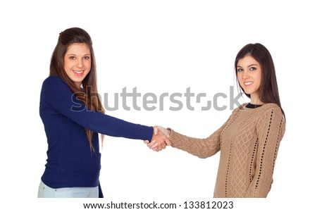 Two friends shaking hands isolated on white background - stock photo