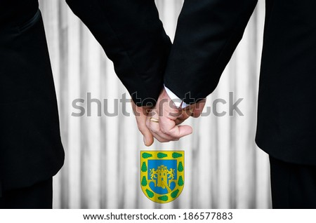 Two gay men stand hand in hand before a marriage altar overlaid with the insignia used in Mexico City, having just been legally married under the Same-Sex Marriage legislation of that jurisdiction. - stock photo
