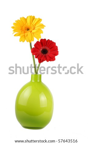 Two Gerbera daisies in vase - stock photo