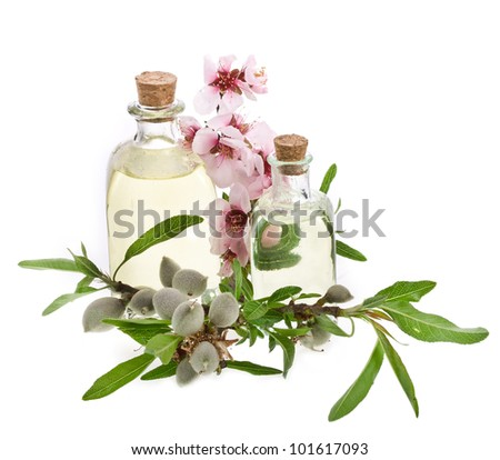 Two glass bottles filled with almond oil and fresh almonds and flowers isolated on the white background - stock photo