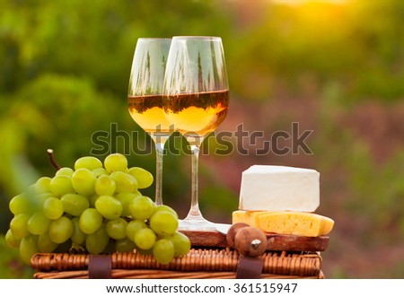 Two glasses white wine, various sorts of cheese and grapes on the background of green grape leaves - stock photo