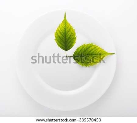 Two green leaves in a ceramic dish isolated on white background - stock photo
