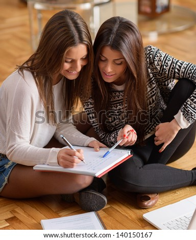 Two Happy Young Women Studying Together, Indoors - stock photo