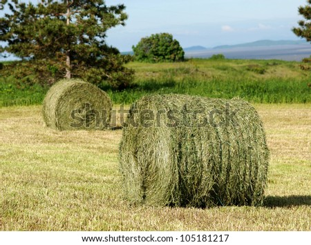 Two hay rolls in a mowed field.  Trees, meadow and hills in the background - stock photo