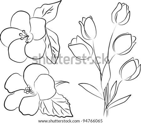 two hibiscus flower and tulip bouquet on a white background - stock photo