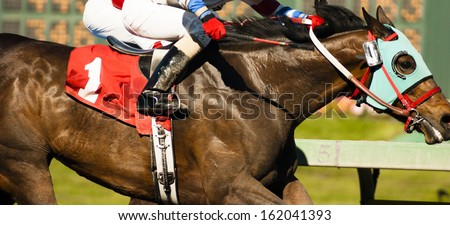 Two Horses and Jockeys Come Aross Finish Line Neck and Neck Number One - stock photo