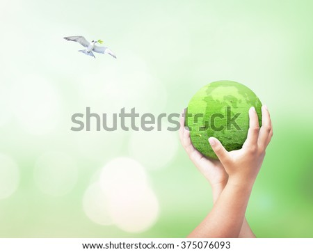 Two human hand hold globe grass and bird flying on beautiful nature background. Unity Go Green Earth Hour CSR Trust Peace Synergy Press Freedom Family Help Life Many Medical Business Support concept. - stock photo