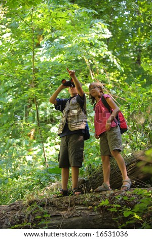 Two kids looking into woods - stock photo