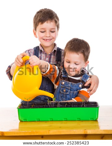 Two kids watering the seedling in the pot, isolated on white - stock photo