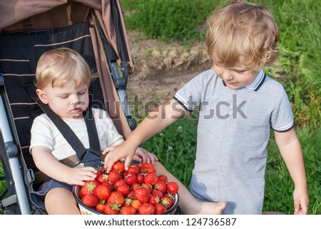 Two little brother boys with bowl strawberries on organic berry farm - stock photo