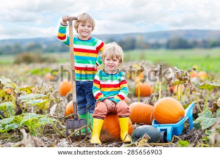 Two little friends sitting on big pumpkins on autumn day, choosing squash for halloween or thanksgiving on pumpkin patch. Kid boys having fun with farming. - stock photo