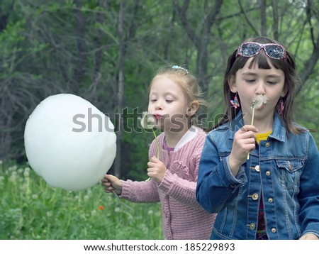 Two little girls blow to dandelions in the summer meadow park outdoor - stock photo