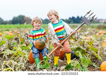 Two little kids boys sitting on big pumpkins on autumn day, choosing squash for halloween or thanksgiving on pumpkin patch. Having fun with farming. - stock photo