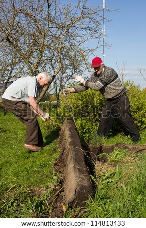 two man working in garden. destroy old building - stock photo