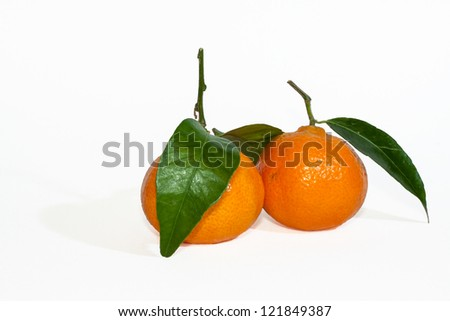 Two mandarins with leaves on white background - stock photo