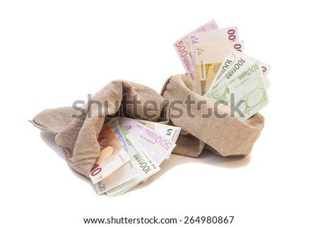 Two Money bags with euro isolated on white background - stock photo